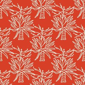 Mountain Agave Reddish Orange