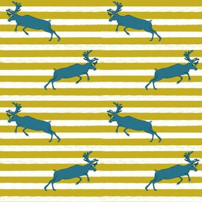 Mustard stripe and Blue Deer