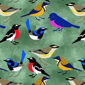 Tasmanian Birds 2
