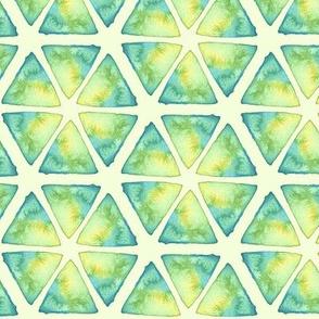 watercolor slices