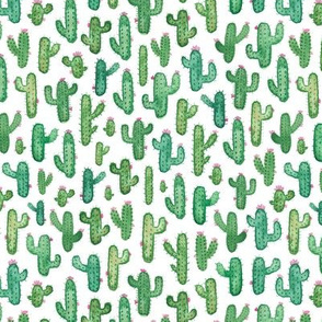 Prickly Watercolour Cacti Smaller