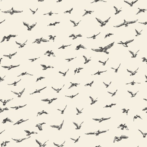 FLOCK OF SCRIBBLES