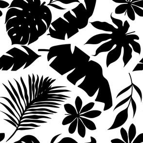 Black And White Palm Leaf