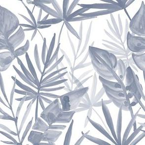 monochrome tropics