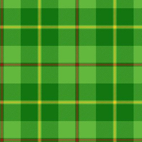 "Galloway hunting tartan - 4.25"" bright, yellow line"