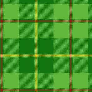 "Galloway hunting tartan - 6"" bright, yellow line"