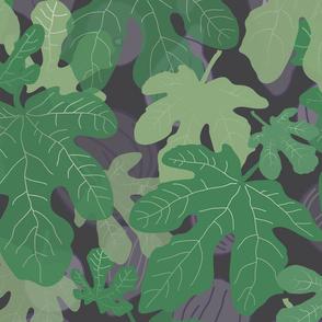 Hidden figs