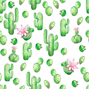 watercolor pattern with green cactus and pink flowers