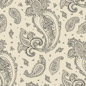 Paisley,  indian pattern