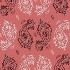 Vintage Paisley pink