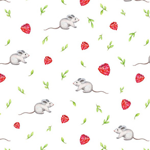 Rasberries and Mouse