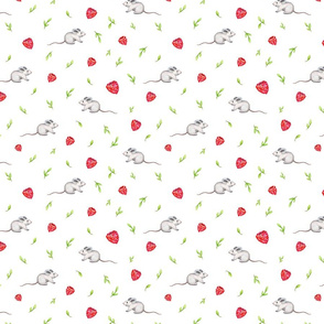 Little Mouse and Rasberry