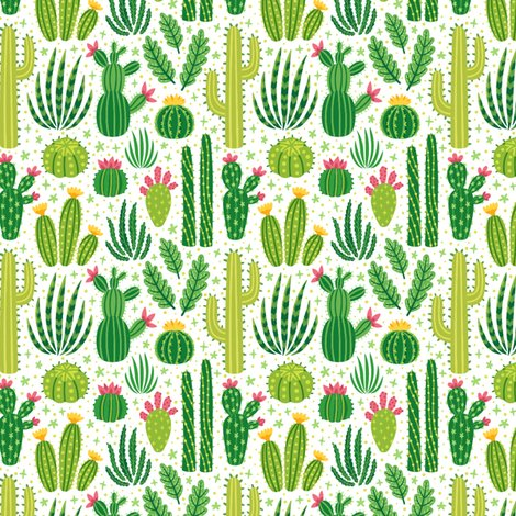Rrcacti-summer-small-scale_shop_preview