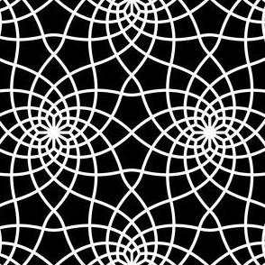 07763519 : SC3 ~ white web