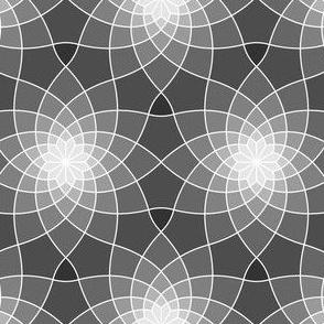 07763521 : SC3 ~ grey cobweb