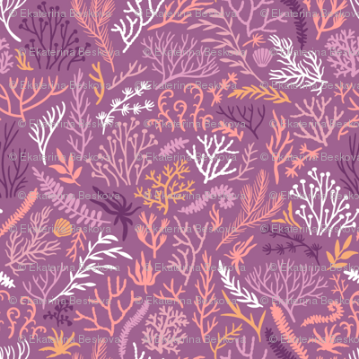 Seaweeds. Purple background.