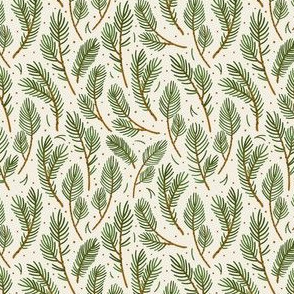 Spruce branches. Milk background.