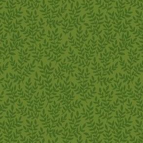 Forest grass.