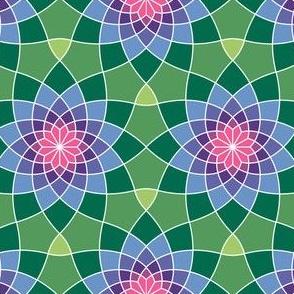 07764215 : SC3 ~ herbalism