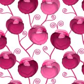 Rai-flowers-hot-pink-on-white_shop_thumb