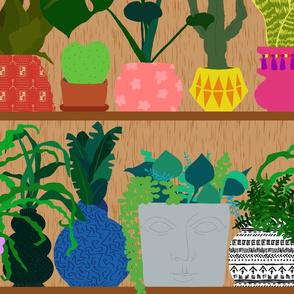 Plants on the Shelf in Warm Wood