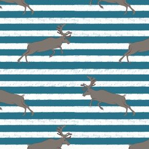 Blue Stripe Gray Deer