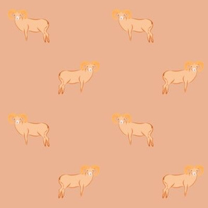 Peach Big sheep