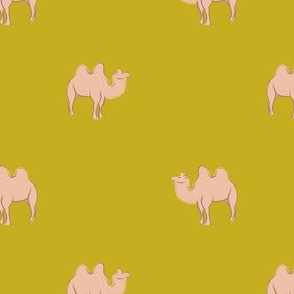 Camels on mustard