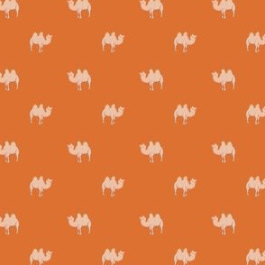 Small camel on orange