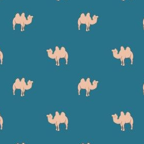 Camel on blue