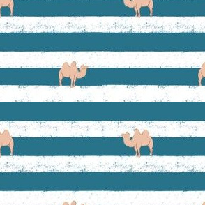 Camel on Stripe