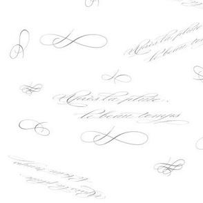 Apres le pluie..Calligraphy