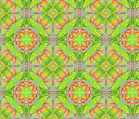 newcircles fabric by dana_zurzolo on Spoonflower - custom fabric