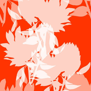 Floral - coral