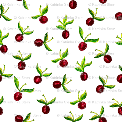 Juicy cherries