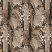 Sepia Birch Trees