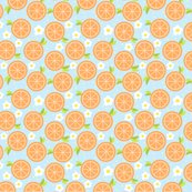 Rsweet-orange_shop_thumb