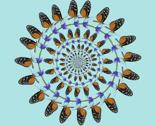 Rlongwingbutterfly-40in-wallpaper2-2_thumb
