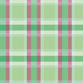 Plaid pattern green and pink