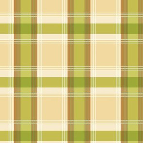 Plaid pattern green and brown