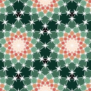 07778649 : SC3 ~ spiny succulent