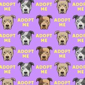 Rlover-not-a-fighter-pit-bull-32_shop_thumb