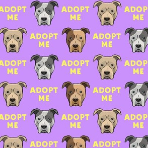 (slightly larger) adopt me - pit bulls on purple / yellow  C18BS