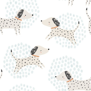 spotty dogs dalmations