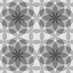 07781363 : circle 8 : shades