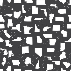 Black and White States