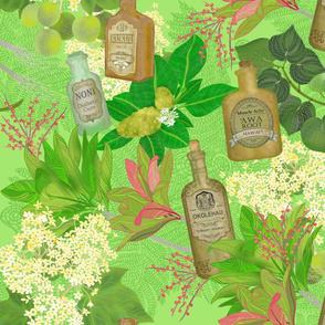 Medicinal Plants Hawaii green