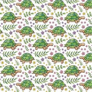Tortoises and Flowers on White - smaller version