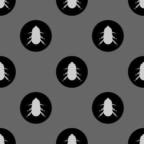 beetles monochrome