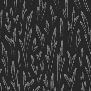 Stag Ferns [grey]